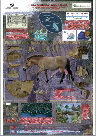 Equus caballus eaensis